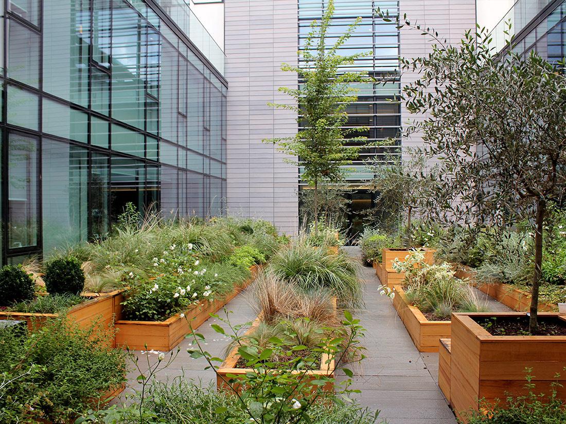 Progetto di giardino pensile per il centro direzionale - Progetto per giardino ...