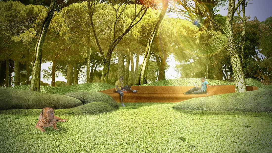 Progetto e realizzazione giardino a castiglione della pescaia grosseto - Progetto giardino privato ...