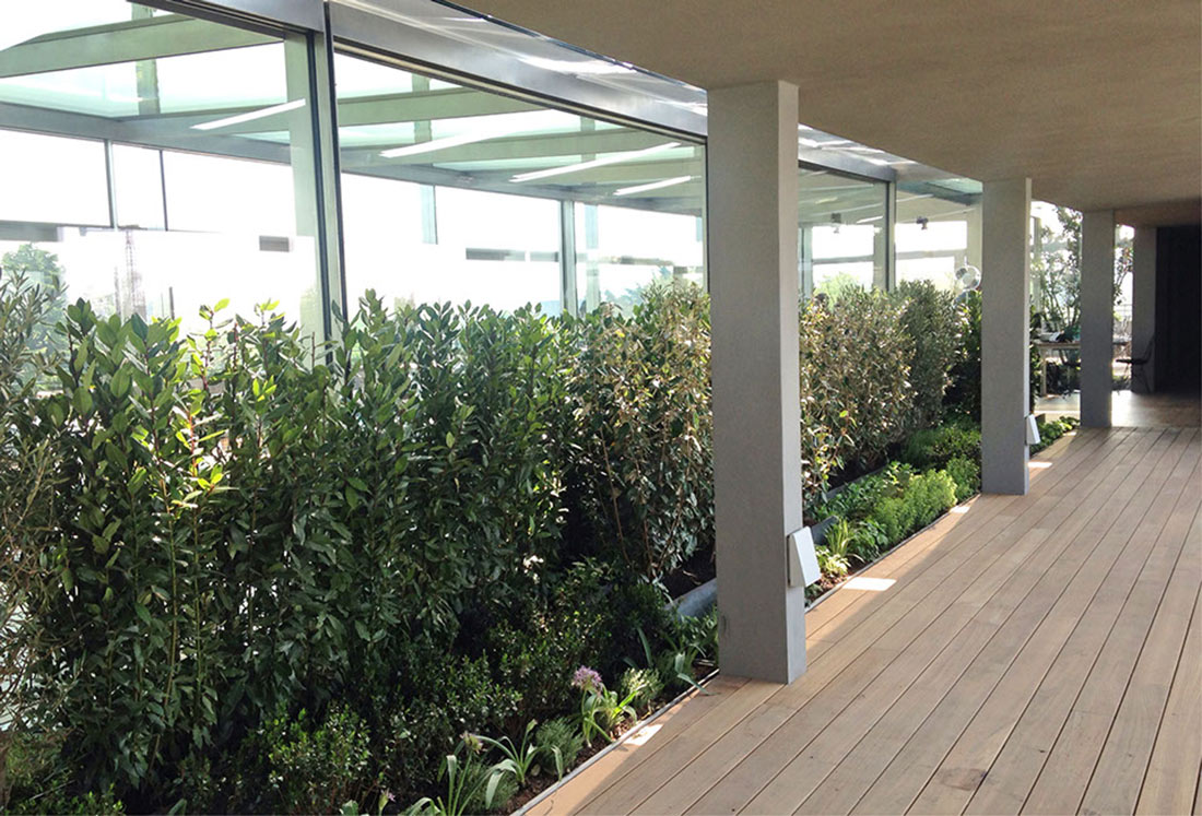 Realizzazione giardino pensile per la terrazza della - Giardino pensile ...